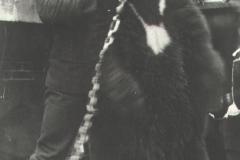191510_Koots